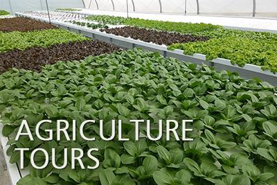 Agriculture Tours in Israel